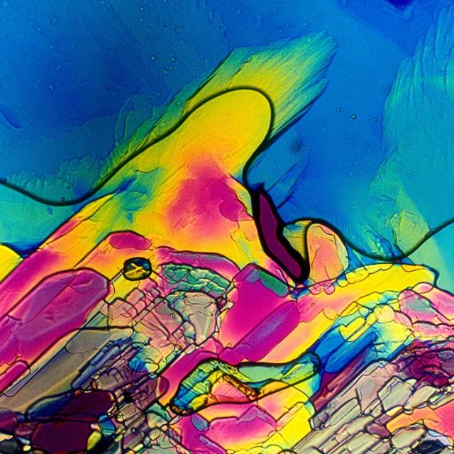 Primeira fotogarfia publicada no artigo Verão Rosé 4 – Rosé sob microscópio